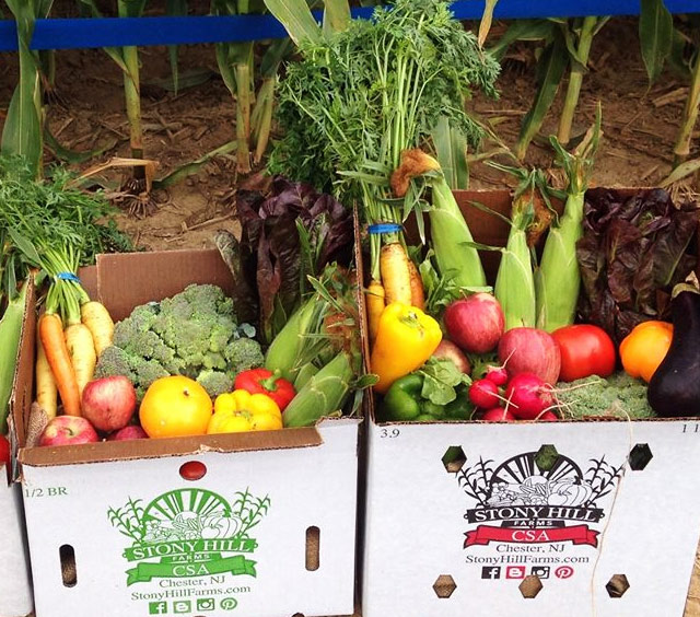 Farm Share Examples - Jersey Fresh Fruits and Vegetables