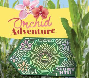 2021 Corn Maze Theme: Orchid Adventure