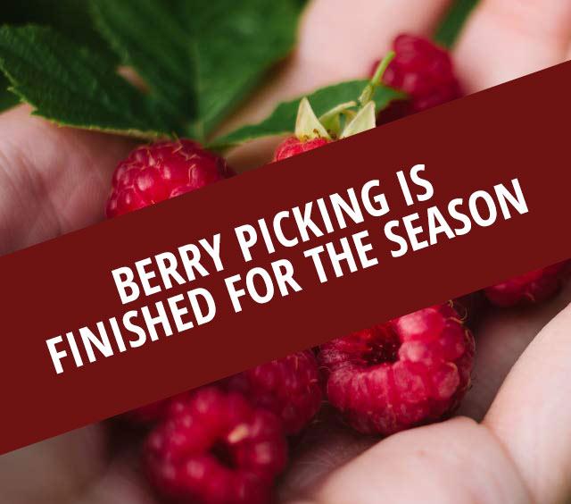 U-Pick Berries Season Over